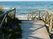 foto_dune_fiori_ponte